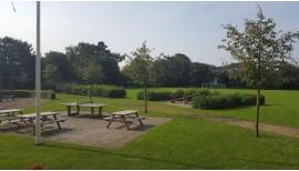 Kräutergarten für die Schule 3