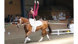 Pferdesport ohne Pferd 2