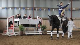 Pferdesport ohne Pferd 3