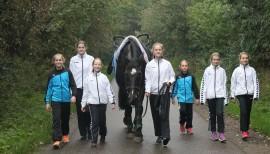 Pferdesport ohne Pferd 4