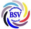 Logo Handballabteilung des BSV Kisdorf